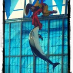 Sea World, San Antonio