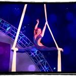Circus Nexus, New Orleans
